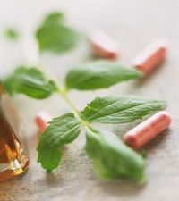 Mega Green Tea Pills